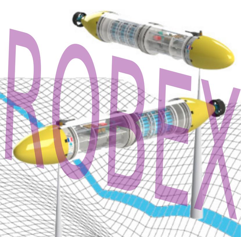 ROBEX