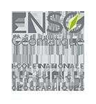 ENSTA Bretagne : logo ENSG