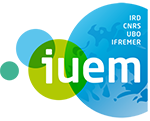 Logo IUEM